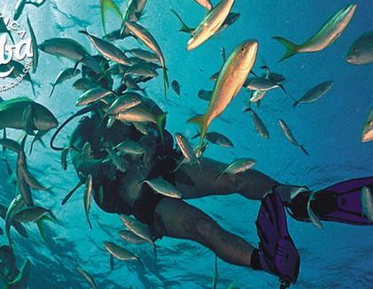 Subaquea – Pesca
